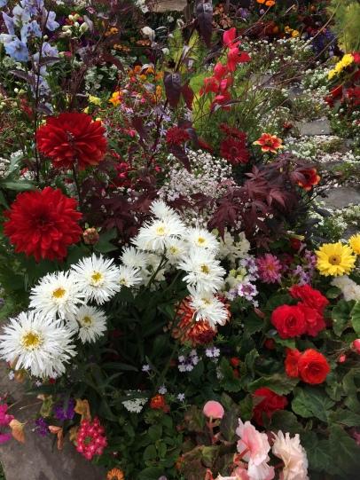 show garden (part)
