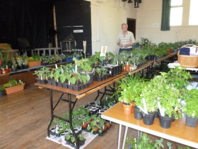 May plant sale a