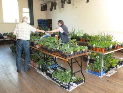 May plant sale b