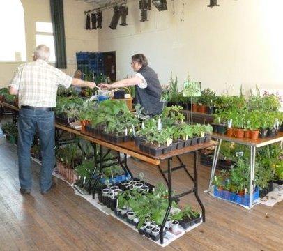 May plant sale b