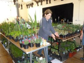 May plant sale d