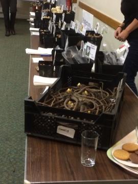 Pottertons sales table