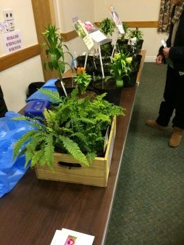 Village Plants sales table 1